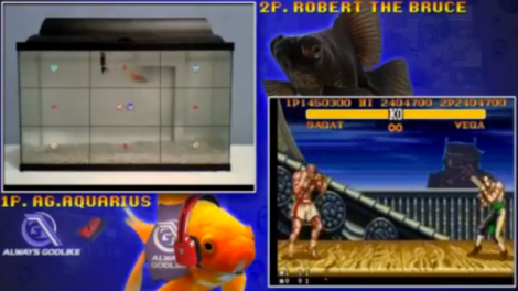 peces street fighter